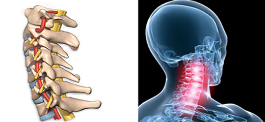 Understanding the spine the Injuries and complications